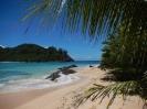 Meer, Sand und Palmen